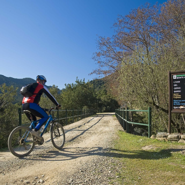 monte arcosu mountain bike